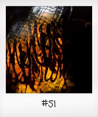 """#DailyPolaroid of 18-11-15 #51 • <a style=""""font-size:0.8em;"""" href=""""http://www.flickr.com/photos/47939785@N05/23447994179/"""" target=""""_blank"""">View on Flickr</a>"""