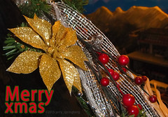 DSCF1832-2 (jerry_springberg) Tags: christmas xmas natal weihnachten navidad noel jul natale クリスマス nadal kerstmis jól karácsony nadolig joulu 聖誕節 圣诞节 рождество kersfees gwiazdka kristnasko коледа sarcalogos xριστούγεννα jerryspringberg chrëschtdag рождествохристово krismasi jerryschristmas