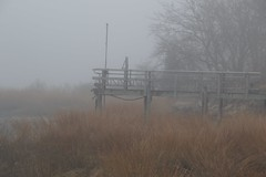 DSC_1016 (Six Sigma Man (Thank you for the 1.6M+ views)) Tags: fog nikon longisland nikond3200 coldspringharbor