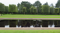 Colleville-sur-Mer (10) (Silvia Inacio) Tags: collevillesurmer cemetery lae lago tree árvore normandy normandie normandia france frança