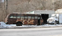 A VERY ROTTEN OLD SCHOOL BUS IN DEC 2016 (richie 59) Tags: ulstercountyny ulstercounty newyorkstate newyork townofulsterny townofulster unitedstates autumn eddyvilleny eddyville winter nystate richie59 america outside weekday wednesday junkyard junkvehicle 2016 bus oldschoolbus oldbus dec2016 dec212016 junked junkschoolbus junkbus 2010s americanschoolbus usschoolbus americanbus usbus 1940sbus hudsonvalley midhudsonvalley midhudson nys ny usa us snow trees rust rusty rusted rustedout rustyschoolbus rustybus sideview rotted faded fadedpaint wornout obsolete automobile auto motorvehicle vehicle rotten rustyoldbus