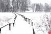 Moor im Schnee (Jan Čmárik) Tags: 6d cmarik canon eos cmrk lenningen badenwürttemberg deutschland de schoploch moor schwäbische alb torfmoor swamp landschaft landscape nature winter snow cold white