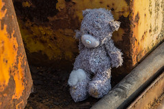 Bulldozer Patina and Teddy, Bear, Hastings Beach (Peter Cook UK) Tags: bear hastings bulldozer beach fishing teddy sussex patina