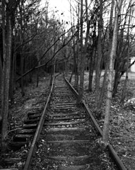 Bring Me All Your Dreams (F. Neil S.) Tags: railroad tracks abandoned downtown bulldurham northcarolina piedmont trees blackandwhite blancetnoir mediumformat 120 rollfilm negative tmax100 stand development xtol rodinal rapidomega100 6x7