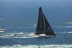 """Closeup zoom of """"Perpetual loyal"""" (""""Sydney to Hobart yacht race"""" - 2016 Boxing Day) after leaving the harbour and is rounding the heads before passing """"The Gap (Vaucluse NSW)"""" on the Southern Head (nicephotog) Tags: sydney hobart yacht race 2016 flotilla boat competitors sail ocean sea spinnaker perpetual loyal leader start"""