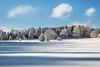 winterliche Idylle (SonjaS.) Tags: winter wintermärchenweg hohenzollern schwäbischealb schnee snow bäume baum wald