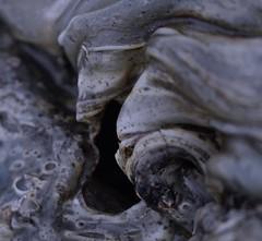 Nazareth, PA (elisecavicchi) Tags: melted plastic warp abstract sculpture twist form macro nj scroll melancholy pennsylvania pa nazareth autumn november