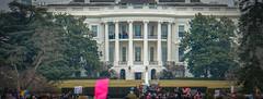 2017.01.21 Women's March Washington, DC USA 2 00155
