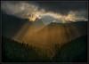 Heavenly Light (Ernie Misner) Tags: f8andbaskinthelight mountrainiernationalpark mountrainier paradise heavenlylight erniemisner nikon d800 nik lightroom capturenx2