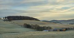 a mellow Scottish sunset as only winter delivers (lunaryuna) Tags: scotland lanarkshire rurallandscape pastoralimage fields rollinghills pastures sheep farm sky clouds sunset sundown dusk evening lightmood trees beauty winter season seasonalchange lunaryuna