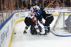 "Missouri Mavericks vs. Wichita Thunder, January 7, 2017, Silverstein Eye Centers Arena, Independence, Missouri.  Photo: John Howe / Howe Creative Photography • <a style=""font-size:0.8em;"" href=""http://www.flickr.com/photos/134016632@N02/31872454160/"" target=""_blank"">View on Flickr</a>"