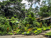 Pojok pasar bunga dan tanaman taman Splendid (hastuwi) Tags: malang jawatimur indonesia idn pojok corner eastjava splendid