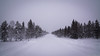 The road to Red Rock (Julien Nyczak) Tags: finland lapland snow road winter tree trees christmas nikon d7100 tokina 1116mm nikond7100 tokina1116 kakslauttanen saariselka