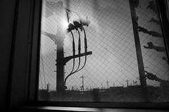 _R016046 (yukiosakaue) Tags: ricohgr gr reflection horizon bw blackandwhite border b
