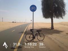 Windy Dubai ride - 3 Mar 2017 (Patrissimo2017) Tags: bicycle cycling