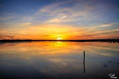 Couché de soleil (lolotorino) Tags: couché soleil camargues france mer marais nuage horizon sunset sea sun beach aigues mortes canon eos500d sunrise wave
