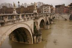Rome 2010 531