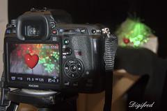 "Making of macro ""Heart"" for Macro Mondays. (Digifred.) Tags: macromondays heart makingof digifred 2016 macro inspiredbyasong myhearttoyou donwilliams red hart valentine valentijn nikon1j5"