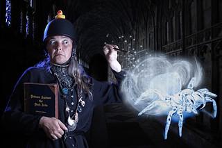 Professor Agnes Mygalomorph accepts a new job...