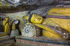 "Dambula caves - Sri Lanka • <a style=""font-size:0.8em;"" href=""http://www.flickr.com/photos/71979580@N08/20542528760/"" target=""_blank"">View on Flickr</a>"