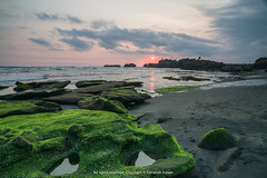 Seascape view at Mengening Beach, Bali, Indonesia (zasazana) Tags: longexposure travel sunset bali seascape nature indonesia landscape temple moss sony slowshutter lowtide rockformation carlzeiss travelphotography mossyrock flowingwater colorimage beautyinnature 1018mm a6000 mengeningbeach zanariahsalam zasazana