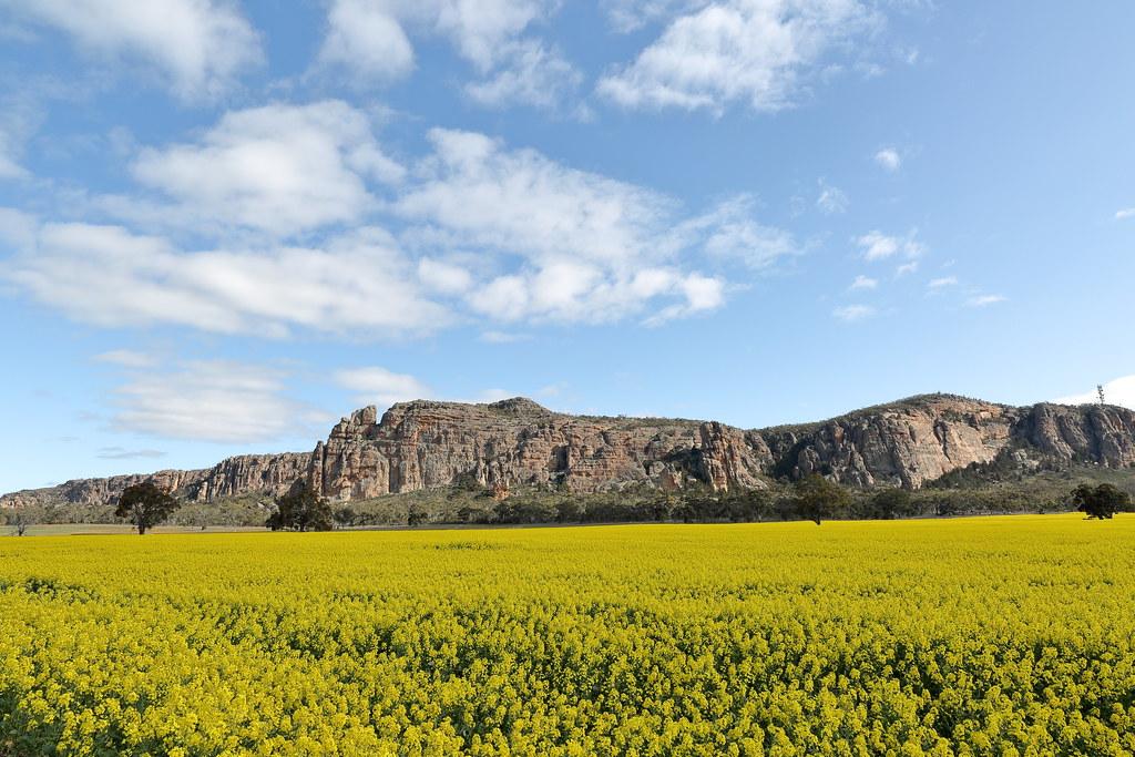 'Mount Arpiles