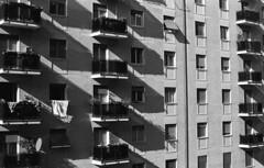 Looking for something in Milan (László K.) Tags: street bw italy lynch milan yellow nikon italia gates films milano 14 7 filter le ke epson f3 nikkor 50 six ais v550 doublex 21° y48 250asa d96