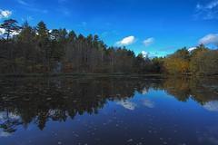 No. 1029 Autumn at the lake (H-L-Andersen) Tags: autumn trees sky forest reflections denmark lakes manfrotto 6d reflektions sø landoflight søer canoneos6d hlandersen tverstedsøerne visistnordjylland