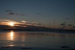 DSC_0020-2 (d66fce) Tags: light sea net clouds sunrise