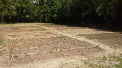 Orto di Abreer (3) (Comune di Reggio Nell'Emilia) Tags: reggioemilia ambiente orto urbani orti abreer