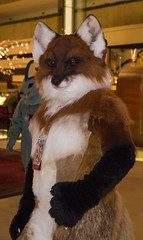 DSC_0068 (Acrufox) Tags: chicago illinois furry midwest december ohare rosemont convention hyatt regency 2014 fursuit furfest fursuiting acrufox mff2014