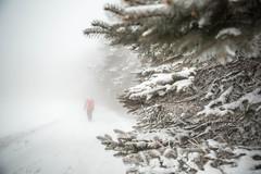 sunday-3103 (FarFlungTravels) Tags: winter ski skiing laurelhighlands pennsylvania reservoir morning sunrise foggy snow squall