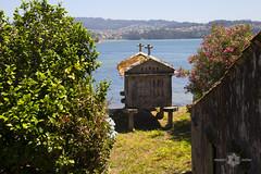 IMG_2594 (Almu_Martinez_Jiménez) Tags: galicia fisterra finisterre terriña peregrino santiago marisco barcos mar marinero camino findocamino vistas views