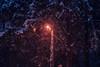 Untitled (elsableda) Tags: night midnight light lights street lamp istanbul elsa bleda urban shadow tree trees birds bird