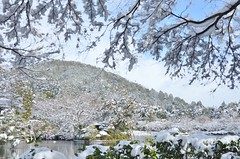 snowy day (snowshoe hare*(slow)) Tags: dsc0100 snow mountain temple ryoanjitemple pond kyoto 龍安寺 鏡容池 雪 衣笠山 京都