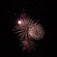 """New Years Eve,  2016 Cairns • <a style=""""font-size:0.8em;"""" href=""""http://www.flickr.com/photos/146187037@N03/31641897360/"""" target=""""_blank"""">View on Flickr</a>"""