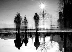 After Rain Comes Sun (CoolMcFlash) Tags: street streetphotography vienna water puddle sunlight sunflare asphalt people silhouette fujifilm xt2 perspective pov pointofview ground strase wien wet nas pfütze sonnenlich sun sonne sonnenstern lensflare personen menschen walking gehen blickwinkel perspektive boden fotografie wasser photography bw blackandwhite blackwhite sw schwarzweis city stadt xf 18135mm 3556r lm ois wr reflection spiegelung bnw