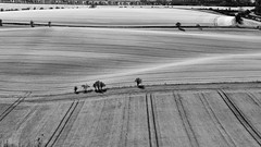 Rolling Fields (thejtype) Tags: rolling fields monochrome blackandwhite bw nikon nikkor d750 70200 f28