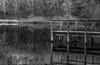 (Russo 86) Tags: bnw blackandwhite biancoenero pontile molo lake lago reflections riflessi albero tree