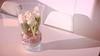 Bought spring in a flowershop (babs van beieren) Tags: 7dwf spring vase glass light shadow indoor flower floralfriday pastels soft