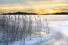 Winter Sky (petterikari) Tags: sunset sky sea shore sonya6300 seascape suomi samyang snow serene hay karhusaari