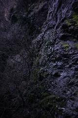 Keschtnweg (inge.sader) Tags: südtirol sonyalpha7ii altoadige feldthurns keschnweg landschaft landscape natur wald forrest sony