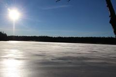(elgsa73) Tags: vinter is sol