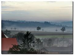 Der Nebel gewinnt ○ The fog takes it all (eagle1effi) Tags: 2048 xnview raw converted final pscape sx60 sx60best highendphoto ae1fave topnotch germanysx60hscanonpowershotsx60hscanonbridgecamerabridgecameracanonpowershotsx60canonsx60powershotsx60sx60hseagle1effisx60hssxcanonsx60hs canonpowershotsx60hs