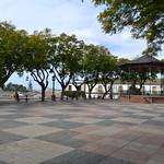 Alameda Vieja de Jerez thumbnail