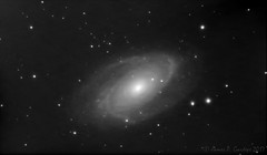 Bode's Nebula: Messier 81 (Zeta_Ori) Tags: astronomy astrophotography galaxy backyardastronomy celestron advanced vx mount celestronadvancedvx explorescientificed80apo refractor 80mm zwoasi290mm deepskystacker monochrome nature night blackbackground blackandwhite bw