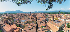 The sky over Lucca (Fil.ippo) Tags: above roof sky panorama cityscape over churches lucca belltower photomerge filippo campanili torreguinigi sigma1020 d7000 filippobianchi