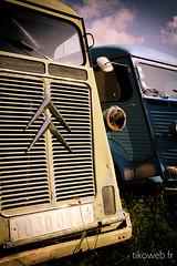 Camionnette Citroen