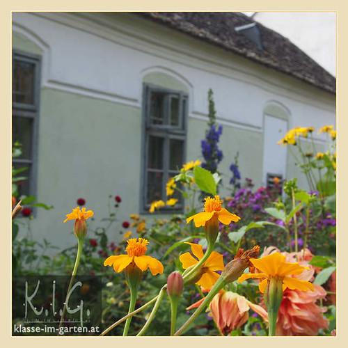 Niedersulz Museumsdorf: Sattlerhaus | 2014-10
