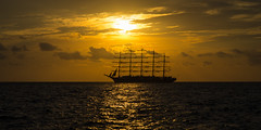 sailing into the sunset (Kitschi_) Tags: autumn sunset sonnenuntergang f14 sony herbst 85mm slovenia piran slowenien walimex adria adriaticsea royalclipper 2015 ilce a7ii samyang
